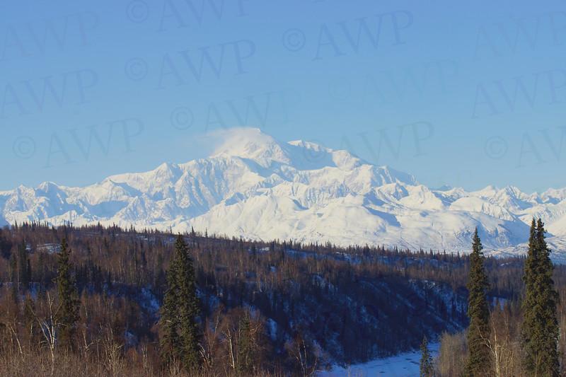 McKinley View