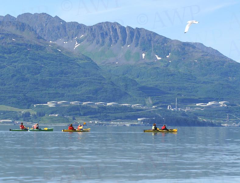 Valdez Summer