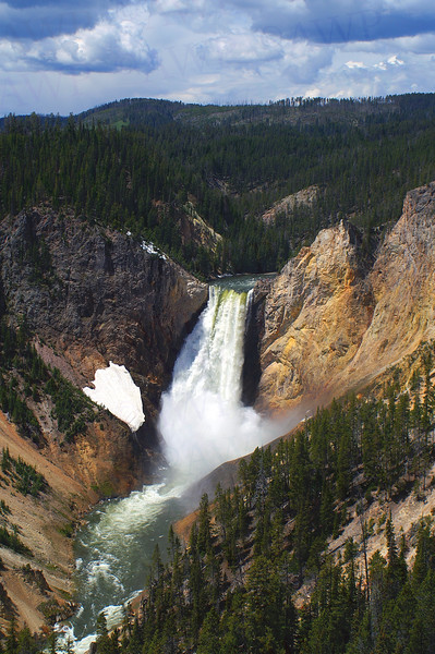 Lower Falls Of The Yellowstone