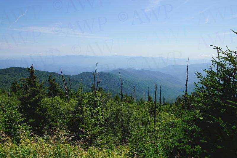 Smoky View