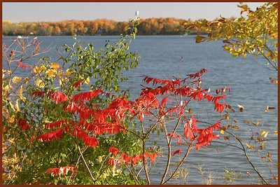 SC-H-0036 Sumac on the Lake