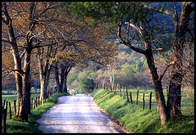 SC-H-0001 Road Home - Cade's Cove