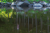 <font size=4><em>Reflection of the lake house</em>