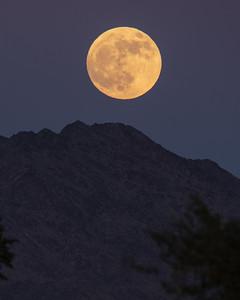 2020-11-29  Yuma, Arizona