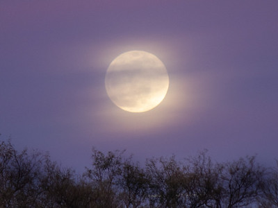 2019-01-20  Super Full Moon