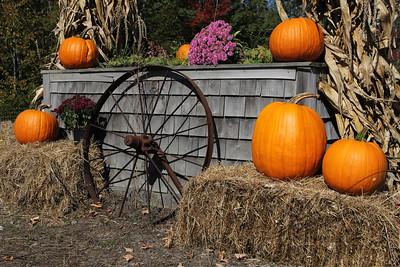 Autumn Colors in Maine