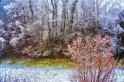 Der erste Schnee | First snow