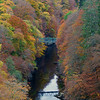 Colours of Pitlochry