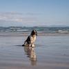 Hamish on Ardlanish Bay