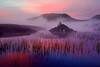 Misty Dawn, Lochan na h-Achlaise<br /> Rannoch Moor