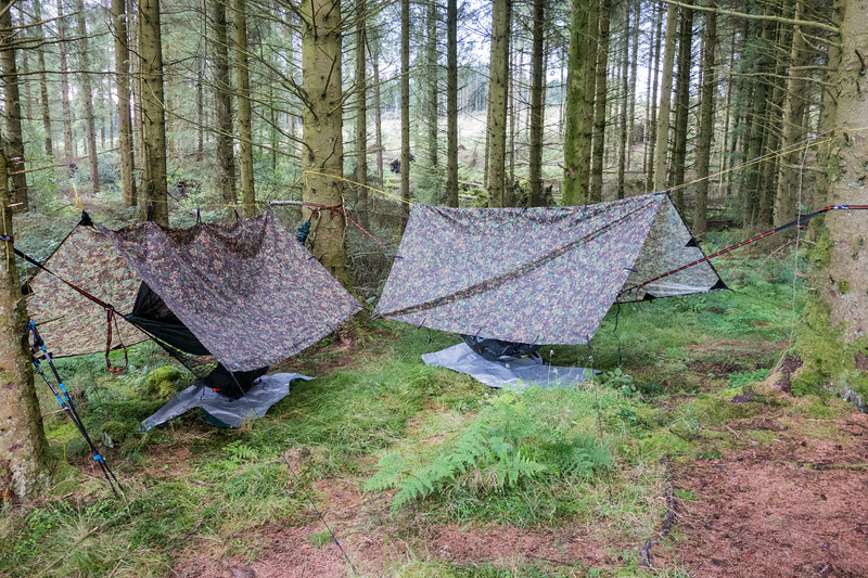'Hammock-ing' in Garadhban Forest