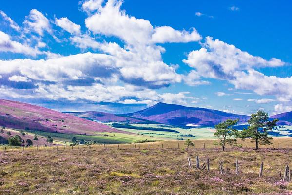 2015-08-30_Scotland_StirlingR_0441