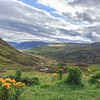 2015-08-31_Highlands_StirlingR_0019