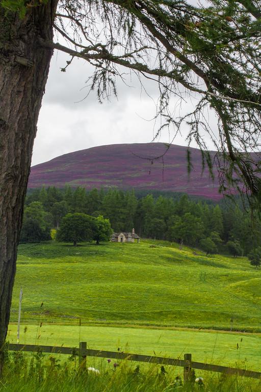 2015-08-31_Scotland_StirlingR_0003