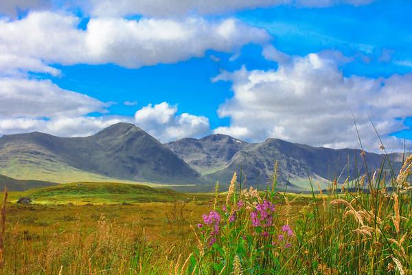 2015-08-25_Highlands_StirlingR_0003