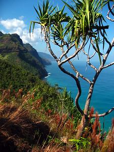 Na Pali Coast Trail (9)