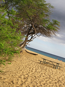 HI 2011 Maui 378