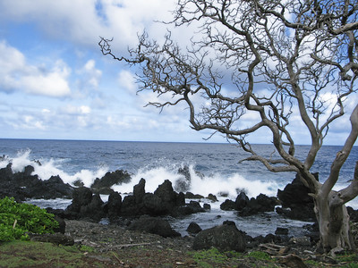 HI 2011 Maui 304