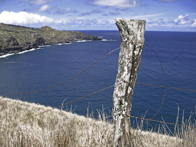 HI 2011 Maui 342