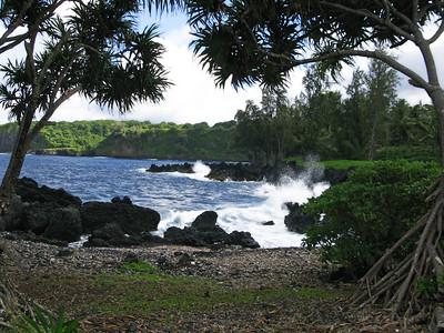 HI 2011 Maui 306