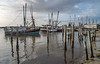 Mayport Shrimp Fleet