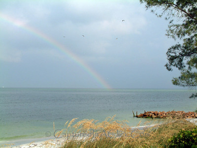 The beauty at the end of the rainbow... Anna Maria Island, FL