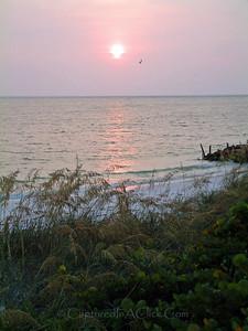 Anna Maria Island, FL