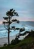 Cannon Beach Christmas--4224