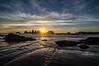 seal rock sunstar-8505