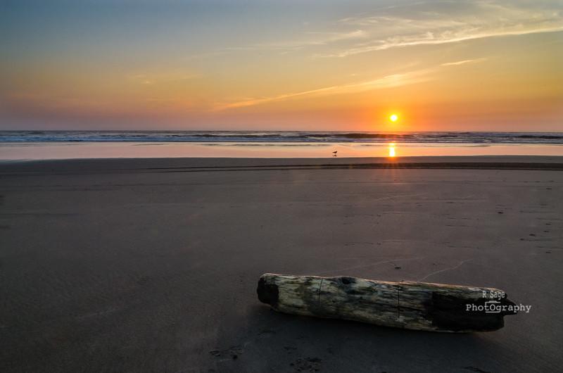 summer sunset-5713