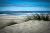 sunny summer beach-0448