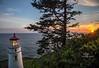 heceta head setting sun-0793