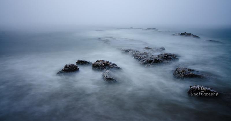 foggy day study -5801
