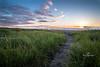 beach path-3836
