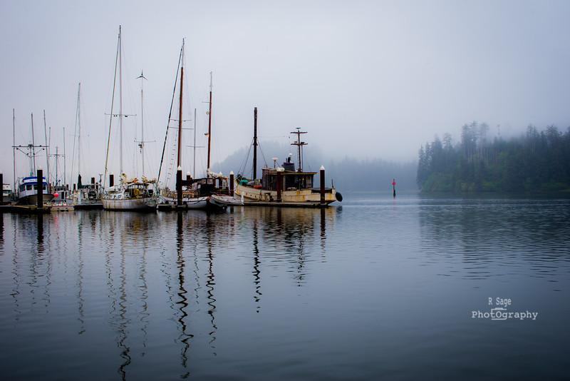 misty morning boats-0498