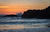 seagull sunset-3355