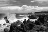 hawaii splash b&w