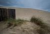 florence sand dune-0358