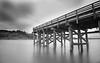 siletz bay pier-9656