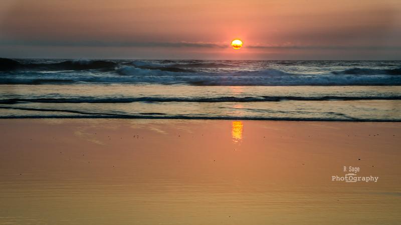 pacific sun-5722