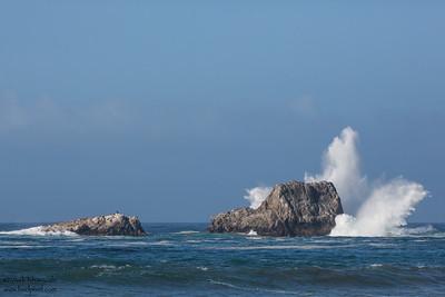 Piedras Blancas - Piedras Blancas, CA, USA