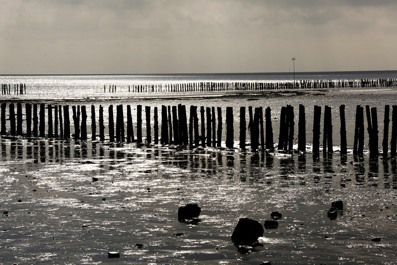 Beach at Cudmore Grove Country Park - Mersea Island - Essex - Feb 2010