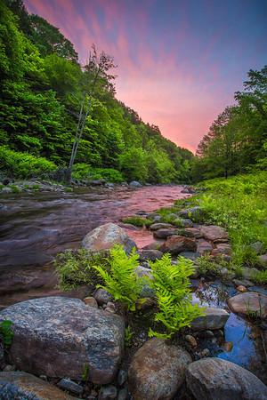 June in Vermont