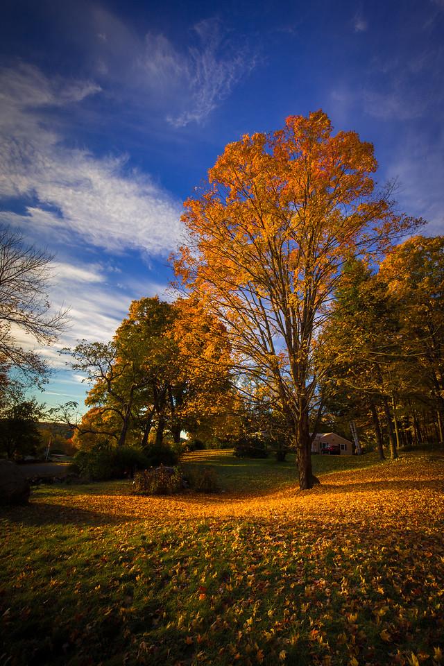 Dregs of Daylight. Springfield, Vermont
