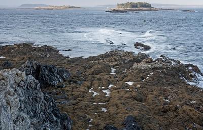cliff island 2013