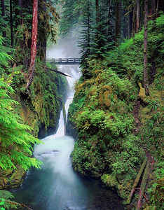 """Solduc Falls"" Perhaps the most beautiful waterfall in the Olympic National Park, the Solduc River creates many picturesque vistas as it winds its way to the Pacific."