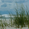 Beach grass and surf