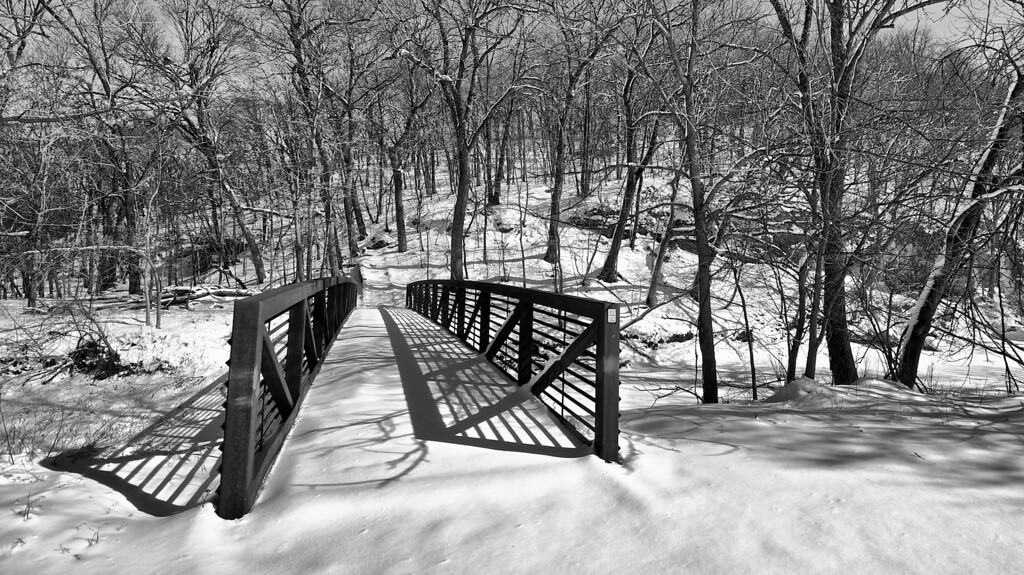 Snow by the River #133151 BW