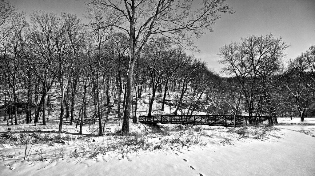Snow by the River #1331255 BW