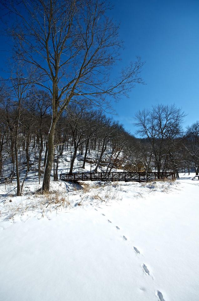Snow by the River #13312566 V